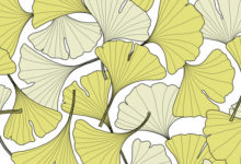 GINKGO PATTERN DESIGN