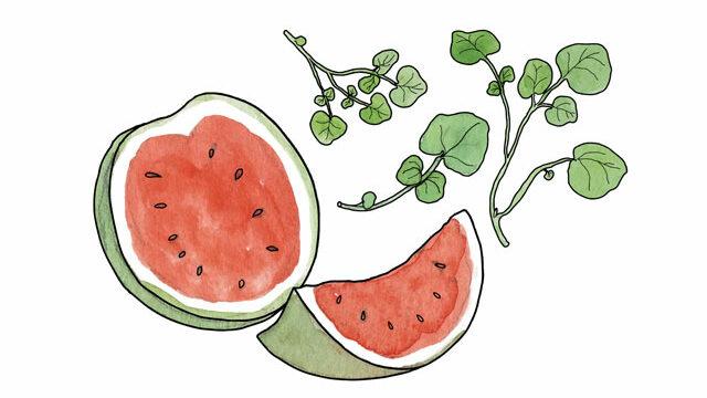 ABC FRUIT & VEGETABLES